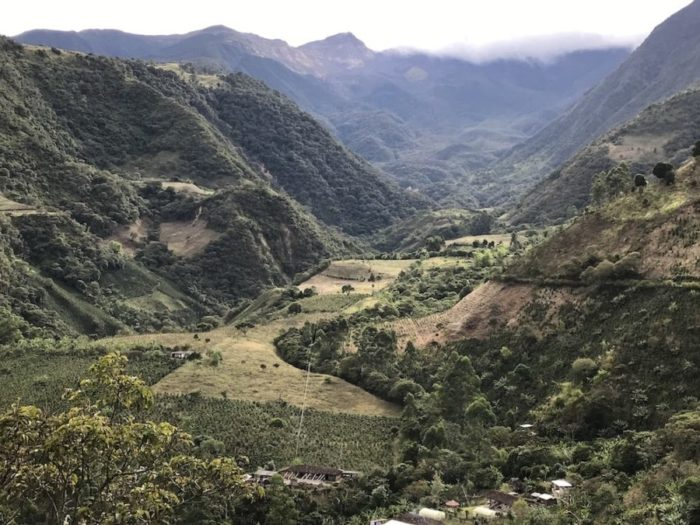 Colombia coffee community