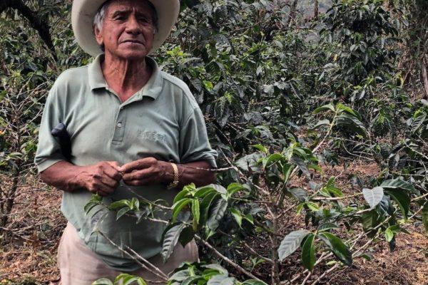 Guatemala Guaya'b