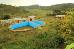 mpanga-washing-station-1