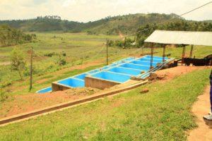 mpanga-washing-station-2