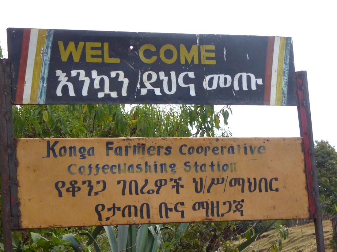 Konga Coffee Cooperative