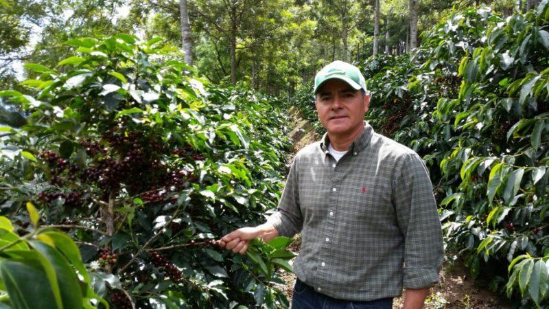 Znalezione obrazy dla zapytania interamericancoffee el morito