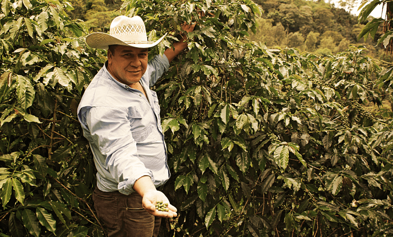 Marvin Carias, coffee producer in Guatemala