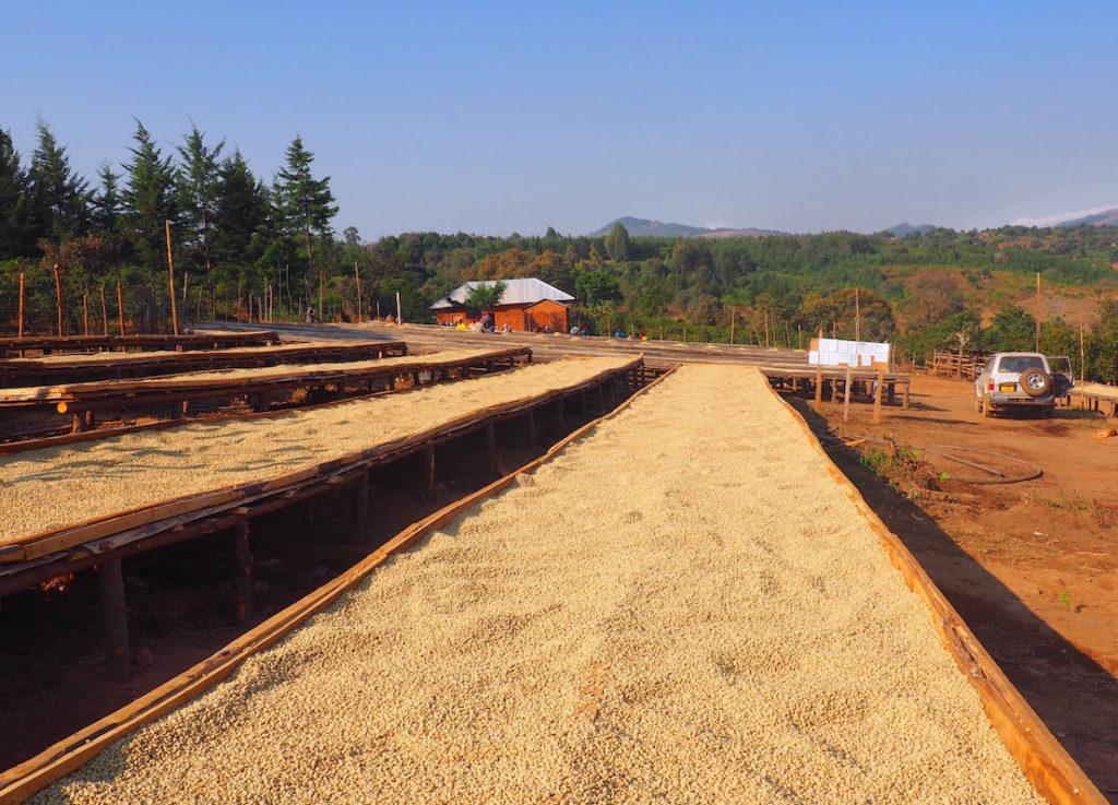 Tanzania coffee mill