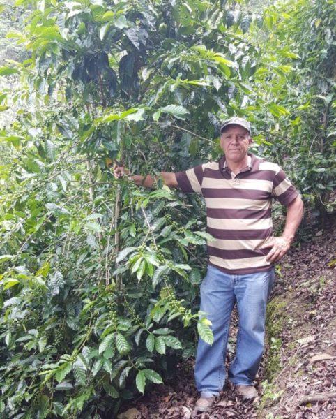 Costa Rica Palmichal