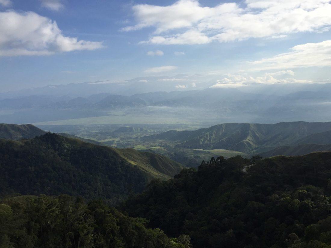 Papua New Coffee