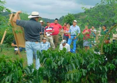 Alliance for Resilient Coffee (ARC)