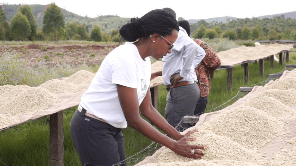 Burundi Mahonda