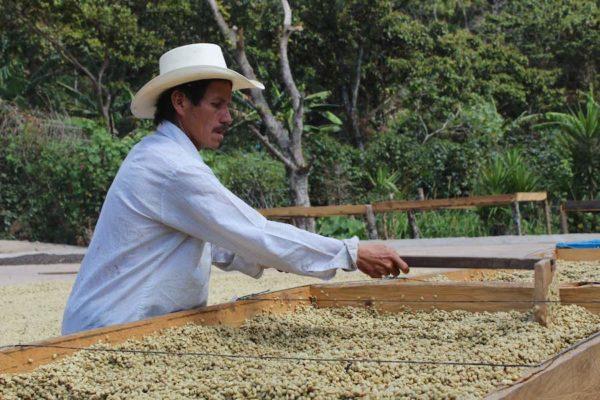 Honduras La Campa Reserva